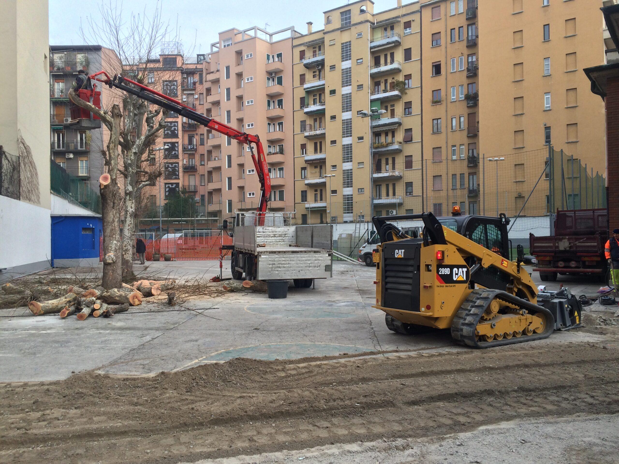 3. Potatura alberi esistenti mediante piattaforma semovente a braccio: lavori in corso.